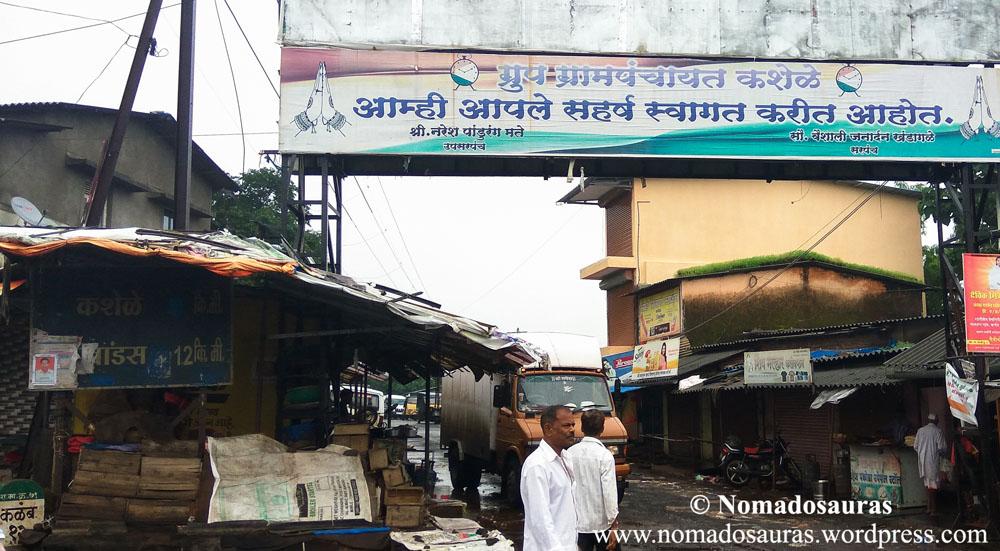 Bhimashankar 3